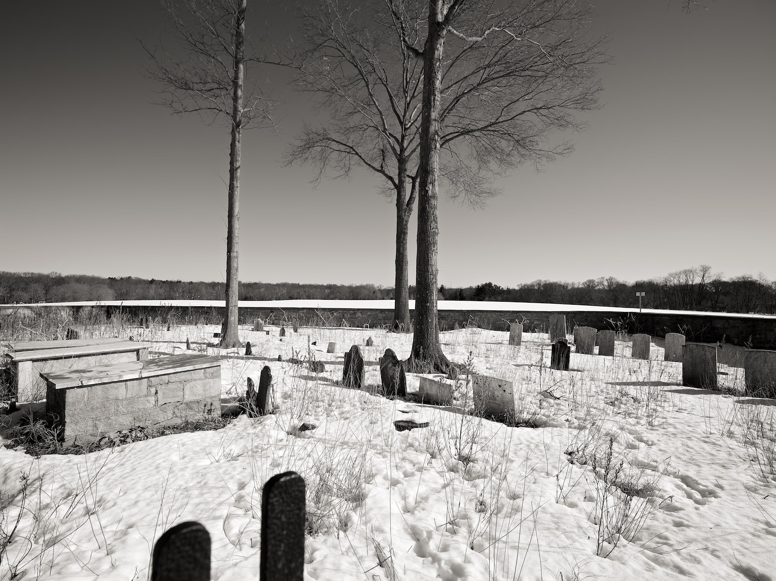 The Buffer - Cemetery, Washington Road, Princeton, NJ