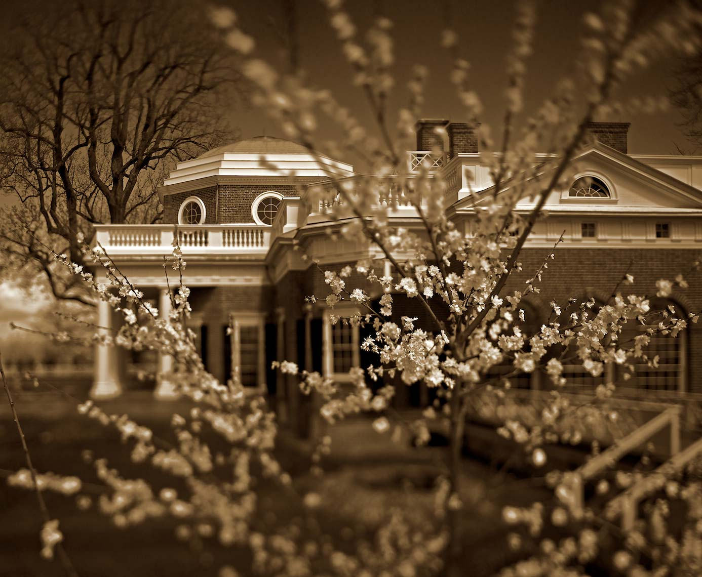 Monticello - Maine House with Cherry Blossoms